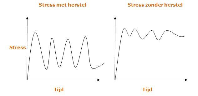 bijnieruitputting-stresscurve