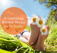 E-learning minder stress