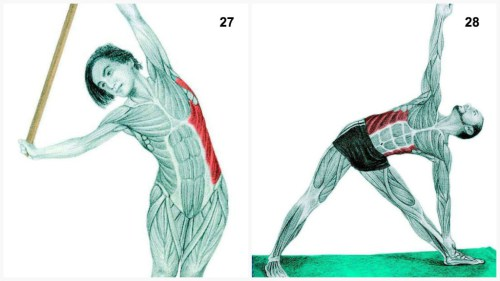 Stretchoefeningen