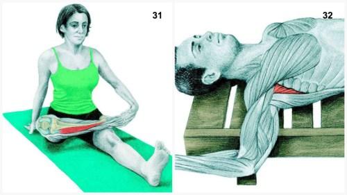 stretching31-32