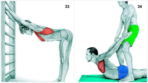 stretching33-34