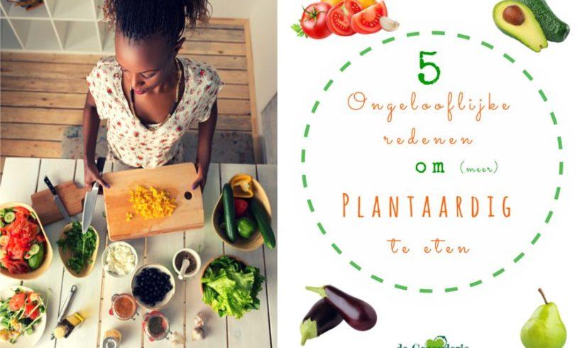 5 Ongelooflijke redenen om (meer) plantaardig te eten