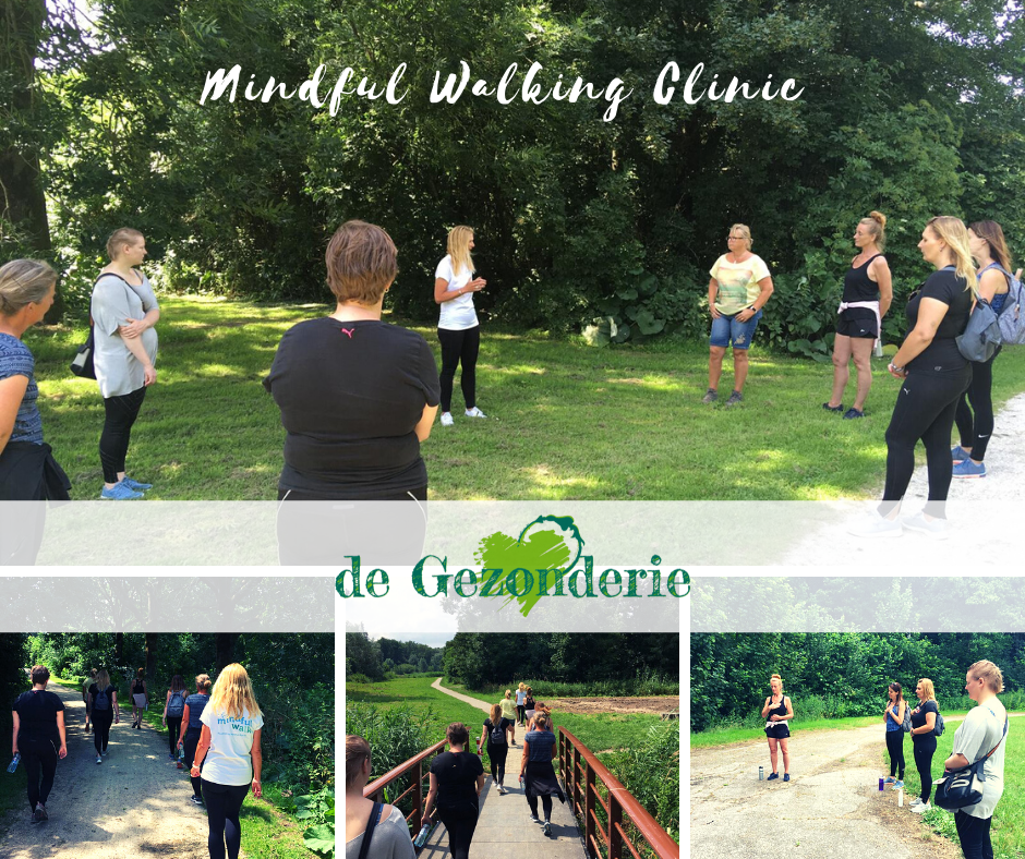 Mindful Walking Clinic Dronten