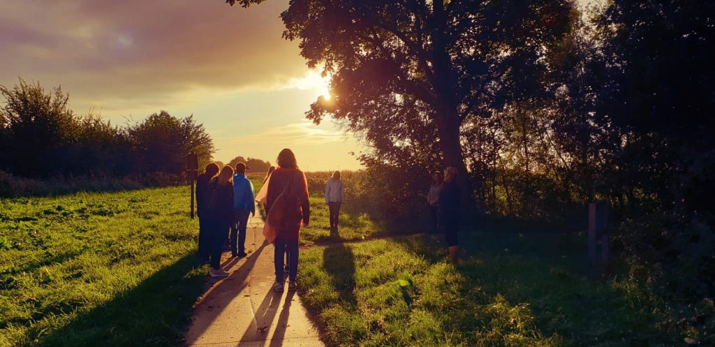 Mindful Walking Cursus Dronten