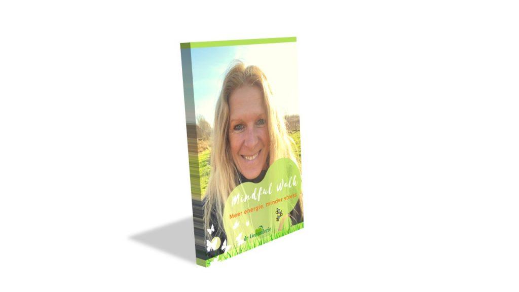 Ebook-cover-Mindful-Walk-3D
